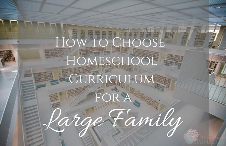 How to Choose Homeschool Curriculum for a Large Family