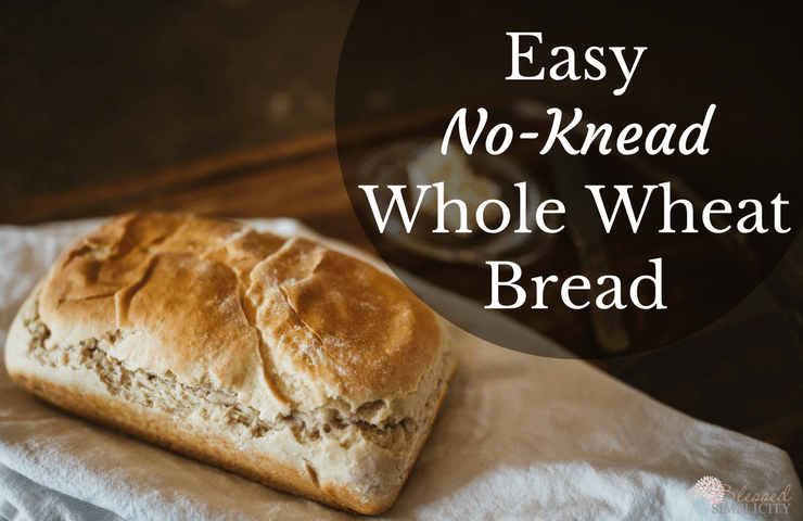 This great tasting whole wheat bread recipe
