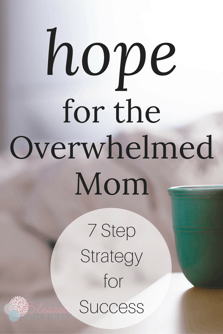 Simple strategies for the overwhelmed mom to conquer dishes, laundry, teens and snotty noses!