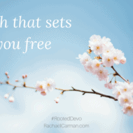 Faith That Sets You Free – Rooted Devotional Series